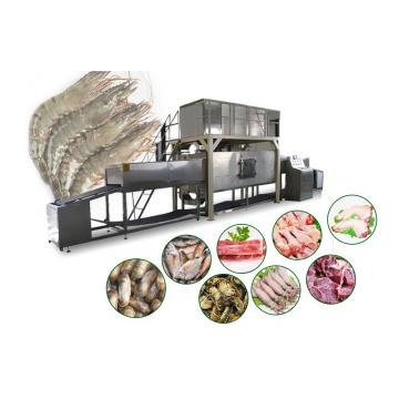 Apple Vacuum Puff Equipment for Food Process/Processing Industry
