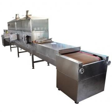 Apple Vacuum Dry Equipment for Food Process/Processing Industry
