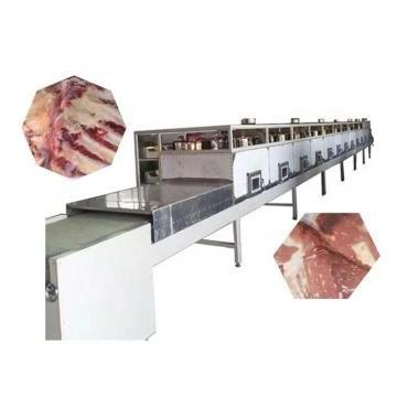 Apple Fruit Crisp Chips Equipment for Food Process/Processing Industry