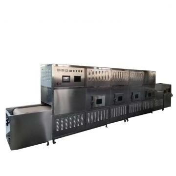 Apple Vacuum Puffing Equipment for Food Process/Processing Industry