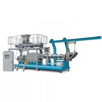 Popular Twin Screw Extruder Corn Flakes Machinery Breakfast Cereals Production Line