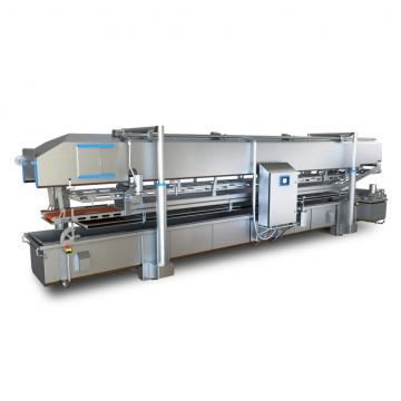 Stainless Steel Frying Processing Line/Fried Snack Chips Production Line/3D Pellet Making Machine