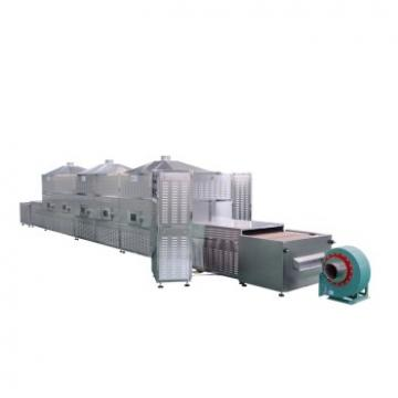 Tunnel Conveyor Microwave Curing Machine Puffing Equipment