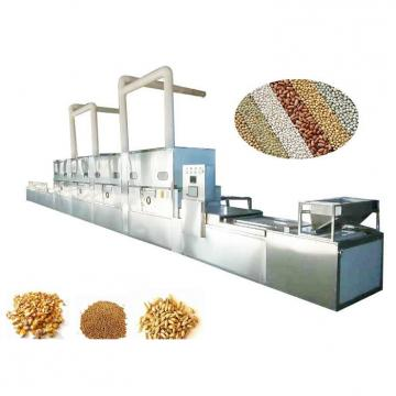 Microwave Continuous Tunnel Curing Dryer Equipment for Soybean, Indian Red Lentil, Green Lentil, Black Lentil