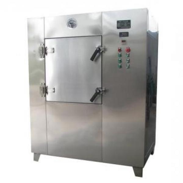 Vegetable Dehydrator Cassava Dryer Microwave Vacuum Oven Nut Food Drying Machine Spices Herbs Dryer