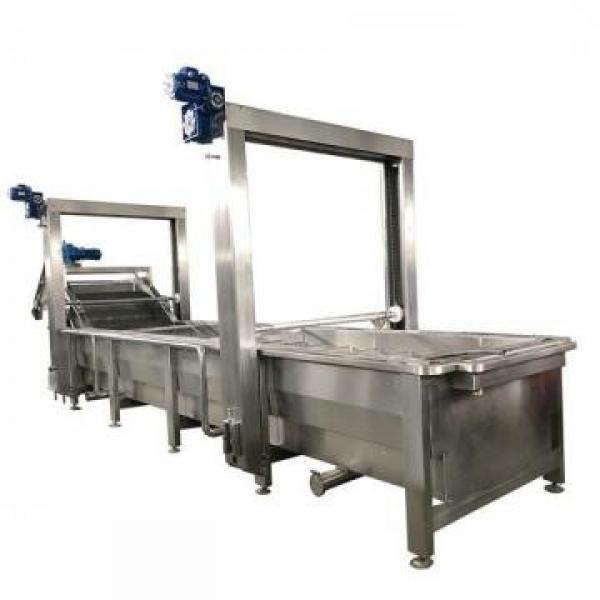 Good Quality Cabbage Processing Equipment
