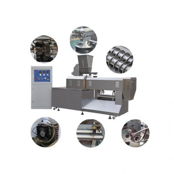 Stainless Steel Twin Screw Extruder Dry Floating Fish Feed Machine Sinking Fish Feed Processing Machines Dog Food Extruder