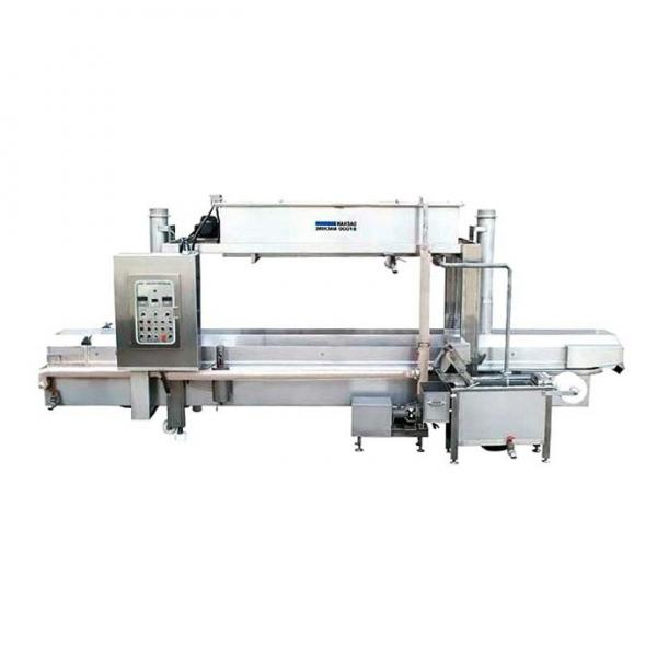 Food Production Line Plant Puffed Chips Snack Extruder Corn Curls Cheese Puff Machine
