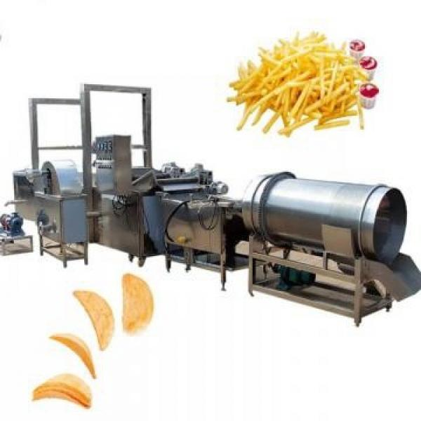 Food Machine for Potato Chips, Chicken Nuts, Banana Chips Automatic Lifting Fryer